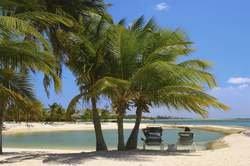 Descubre Aruba oferta hotel en Destinia.com