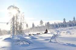 Reyes en Laponia - Rovaniemi oferta hotel en Destinia.com
