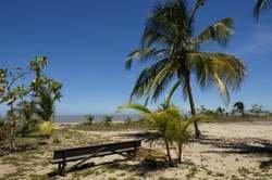 Descubre Guayana Francesa oferta hotel en Destinia.com