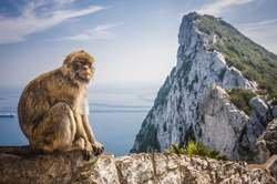 Escapada a Gibraltar oferta hotel en Destinia.com