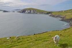 Irlanda Tradicional - Semana Santa oferta hotel en Destinia.com