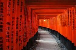 Japón al Completo: Tokyo, Monte Fuji, Kioto y Nara oferta hotel en Destinia.com