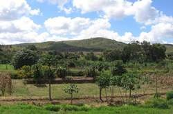 Descubre Malawi oferta hotel en Destinia.com