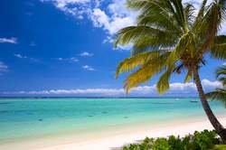 Isla Mauricio - Especial Novios oferta hotel en Destinia.com