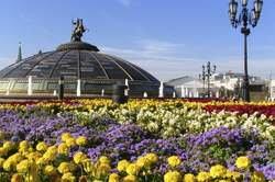Conocer Moscú oferta hotel en Destinia.com