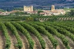 La Rioja en Estado Puro oferta hotel en Destinia.com