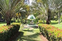 Descubre San Vicente y Las Granadinas oferta hotel en Destinia.com