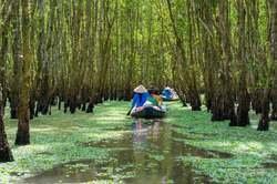 Vietnam Elemental con Camboya, desde Madrid oferta hotel en Destinia.com