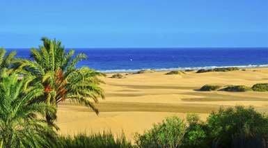 PLAYAS DE LAS PALMAS DE GRAN CANARIA      -                     Gran Canaria                     Islas Canarias