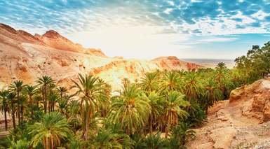 TÚNEZ: OASIS E HISTORIA       -                     Matmata, Sbeitla, Túnez, Kairuán                     Sfax, Douz, Hammamet, Tozeur